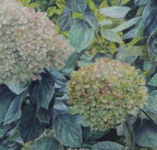Anselma Murswiek in der Galerie Kanzlei