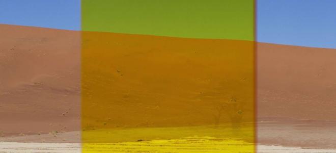 Viviane Sassen - Yellow Vlei